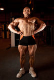 Bodybuilder demonstrates his muscles Royalty Free Stock Photo