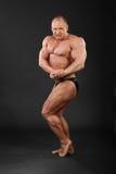 Bodybuilder demonstriert Arme und Fahrwerkbeinmuskeln Lizenzfreies Stockbild