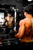 Bodybuilder, der in der Turnhalle ausarbeitet Lizenzfreies Stockbild