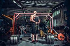 Bodybuilder, der für deadlift von Barbell sich vorbereitet Lizenzfreie Stockfotos