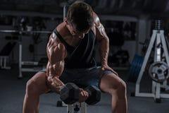 Bodybuilder in der Gymnastik Lizenzfreie Stockfotos