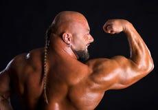 Bodybuilder, der Muskeln der Rückseite und der Arme demonstriert Lizenzfreie Stockbilder