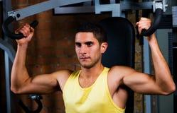 Bodybuilder, der Rückenmuskel ausbildet lizenzfreies stockfoto