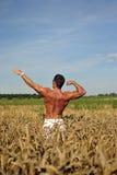 Bodybuilder die taille-zichdiep op het gebied bevindt Stock Afbeeldingen