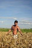 Bodybuilder die taille-zichdiep op het gebied bevindt Stock Afbeelding