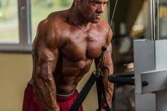 Bodybuilder die zwaargewicht oefening voor triceps met kabel doen Stock Foto's