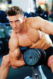 Bodybuilder doing dumbbell exercise Stock Photo