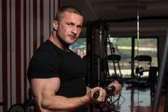 Bodybuilder Doing Exercise For Biceps royalty free stock image