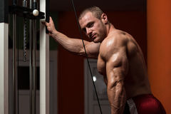 Bodybuilder Doing Exercise For Triceps Stock Photography