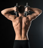 Bodybuilder doing exercises with dumbbells. Behind Royalty Free Stock Image