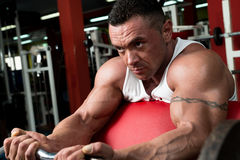 Bodybuilder Doing Heavy Barbell Exercise Stock Image