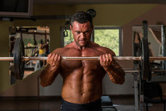 Bodybuilder doing heavy weight exercise for biceps with barbell Royalty Free Stock Images