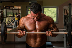 Bodybuilder doing heavy weight exercise for biceps with barbell Stock Images