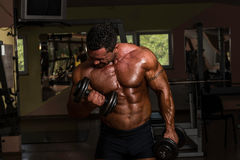 Bodybuilder doing heavy weight exercise for biceps with dumbbell Royalty Free Stock Images
