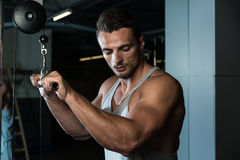 Bodybuilder Doing Heavy Weight Exercise For Triceps With Cable Royalty Free Stock Photography