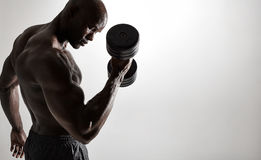 Bodybuilder doing heavy weight workout for biceps Stock Photo