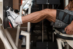 Bodybuilder Doing Legs Exercise Royalty Free Stock Image