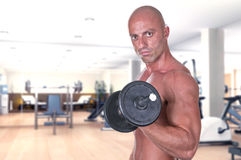 Bodybuilder dumbbell. At the gym Stock Image