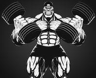 Bodybuilder with dumbbell. Vector illustration, bodybuilder doing exercise with dumbbells for biceps Stock Images
