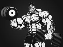 Bodybuilder with dumbbell. Vector illustration, bodybuilder doing exercise with dumbbells for biceps Stock Photography