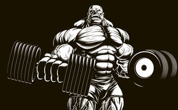 Bodybuilder with dumbbell. Vector illustration, bodybuilder doing exercise with dumbbells for biceps Royalty Free Stock Images