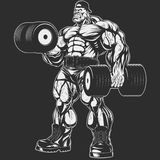 Bodybuilder with dumbbell. Vector illustration, bodybuilder doing exercise with dumbbells for biceps Stock Image