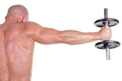 Bodybuilder dumbbell on white background. Young bodybuilder dumbbell on whitw background Stock Image