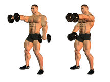 Bodybuilder with dumbbells Royalty Free Stock Images