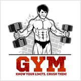 Bodybuilder with dumbbells - monochrome vector illustration Stock Image