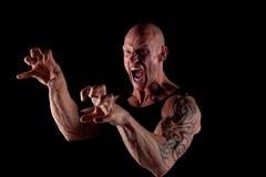 Bodybuilder enojado Imagenes de archivo