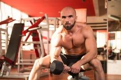 Bodybuilder exerçant le biceps avec des haltères Photographie stock