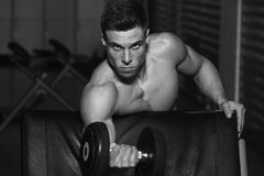 Bodybuilder Exercise With Dumbbells Royalty Free Stock Image