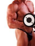 Bodybuilder exercising Stock Photography