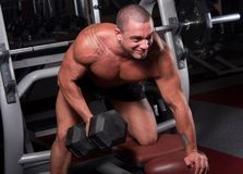 Bodybuilder exercising. In a gym Royalty Free Stock Photography