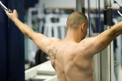Bodybuilder exercising. Rear view of young bodybuilder with bare torso exercising with weight machine in gym Stock Photos