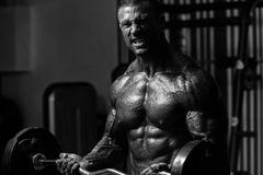 Bodybuilder Exercising Biceps With Barbell In Gym Stock Photo