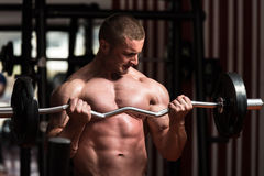 Bodybuilder Exercising Biceps With Barbell In Gym Royalty Free Stock Images