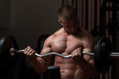 Bodybuilder Exercising Biceps With Barbell In Gym Stock Image