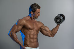 Bodybuilder Exercising Biceps With Dumbbells On Grey Background Royalty Free Stock Photography
