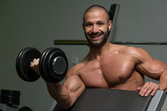 Bodybuilder Exercising Biceps With Dumbbells. Muscular Young Man Doing Heavy Weight Exercise For Biceps With Dumbbell In Gym royalty free stock photo
