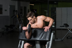 Bodybuilder Exercising Biceps With Dumbbells Stock Photography