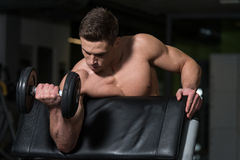 Bodybuilder Exercising Biceps With Dumbbells Royalty Free Stock Photography
