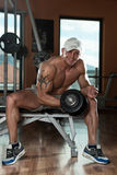 Bodybuilder Exercising Biceps With Dumbbells Royalty Free Stock Image