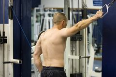 Bodybuilder exercising in gym. Rear view of bare chested young male bodybuilder using lat pull-down machine in gym Stock Photos