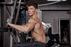 Bodybuilder exercising in the gym Stock Image