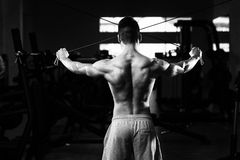 Bodybuilder Exercising Shoulders On Cable Machine Royalty Free Stock Image