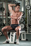Bodybuilder Exercising Triceps With Dumbbells Stock Images