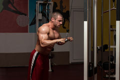 Bodybuilder Exercising Triceps Royalty Free Stock Images