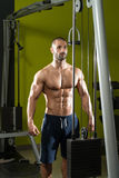 Bodybuilder Exercising Triceps Stock Photos