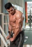 Bodybuilder Exercising Triceps Stock Photo